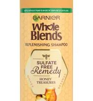 Save $2.00 off (1) Garnier Whole Blends Shampoo Printable Coupon